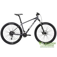 Mountain Bicycle - Giant Talon 29 2020